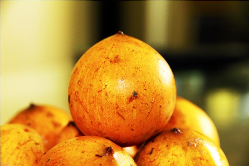 Fruits that are native to Africa - White Star Apple